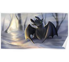 Toothless In Snow Poster