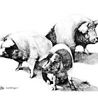 These Little Piggies by Marg Thomson by fullcirclemandalas  is Marg Thomson