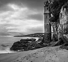 Victoria Tower by Radek Hofman