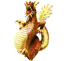 Dragon t Photographic Print