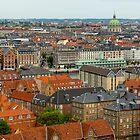 Copenhagen Rooftops by Cameron B