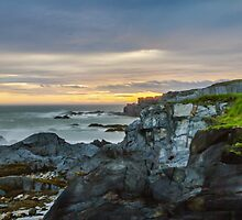 Evening Falls, Cape St. Mary by Debbie  Roberts