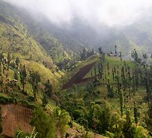 The Mountains of East Java by Keith Thomson