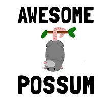 Awesome Possum by AmazingMart