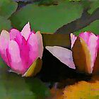 Watercolor Waterlilies by Lisa Taylor