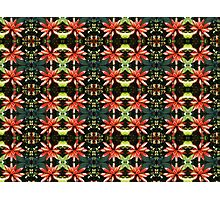 Burchellia bubalina motif Photographic Print
