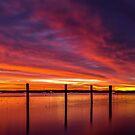 Redland Bay Glory - Qld Australia by Beth  Wode