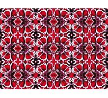Dianthus motif Photographic Print