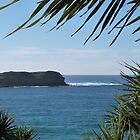 'Cook Island!' from Fingal Head. N.S.W. Nth. Coast & Hinterland. by Rita Blom