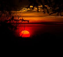 Horizons Goodbye by Daniel Watts