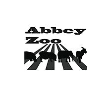 Abbey Zoo Photographic Print