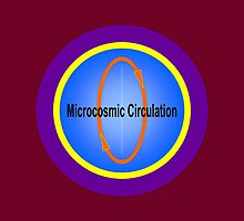 Microcosmic Circulation • 2008 by Robyn Scafone