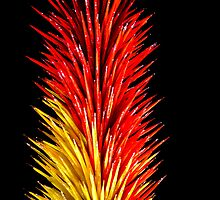 Dale Chihuly Glass Art by Alemay