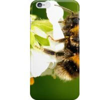 Bee In Peebles Garden iPhone Case/Skin