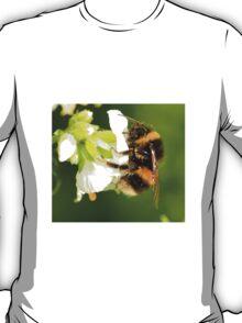 Bee In Peebles Garden T-Shirt