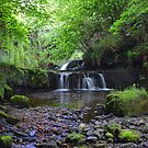 Garell Glen,Kilsyth,Scotland by Jim Wilson