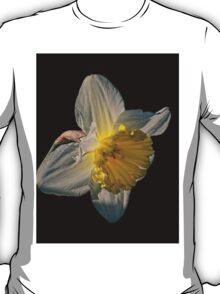 Sunlight Daffodil T-Shirt