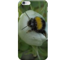 Bee- Have! iPhone Case/Skin