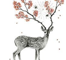 Deer and flowers by procraztinator