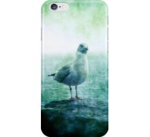 See the Seagull iPhone Case/Skin