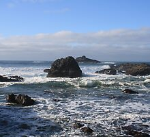 Crashing Waves and Rocky Tide Pools by Taylor Simpson