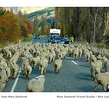 South Island Traffic Jam by ronlaughlin