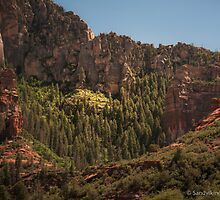 Oak Creek Canyon  by George Trimmer