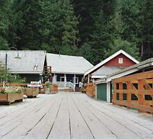 Telegraph Cove by Louise Bichan