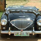 1953 Austin Healey BN1 100-4 2-seater by Maree  Clarkson
