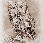 Owl Sketch 04 by fantasytripp