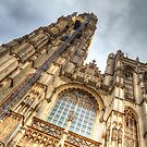 Notre Dame Cathedral - Antwerpen by Robyn Carter