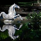 The Winterthur Seahorse by cclaude