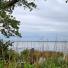 Currituck Sound by WeeZie