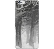 What's Your Story? iPhone Case/Skin