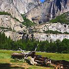 Upper and Lower Yosemite falls by Nancy Richard