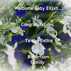 Welcome Baby Elijah by jeanlphotos