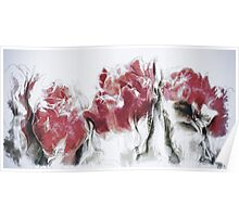 French Country Roses Poster