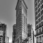 Flat Iron Building by rkteck