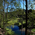 Tallebudgera Valley by Noel Elliot