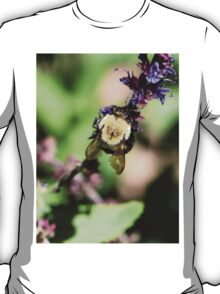 Bumble  Beautiful T-Shirt