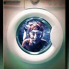 The Wash Cycle by Richard  Gerhard