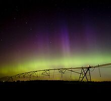 Northern Lights by Michael Treloar
