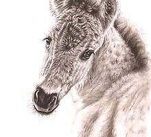 Wild Horse Foal by Nicole Zeug