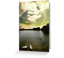 Swans and Sky at Thatcham Lakes Greeting Card