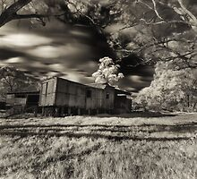 Derelict train by mellosphoto