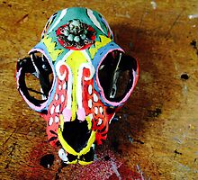 Painted Skull Adorned by jafabrit