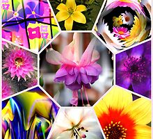 Floral Collage by Artisimo