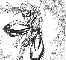 The Amazing Spiderman by Wasif