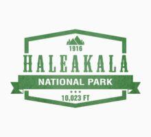 Haleakala National Park, Hawaii by CarbonClothing