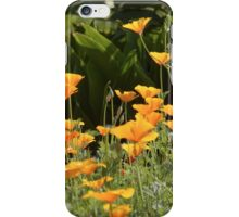 Summer Blooms iPhone Case/Skin